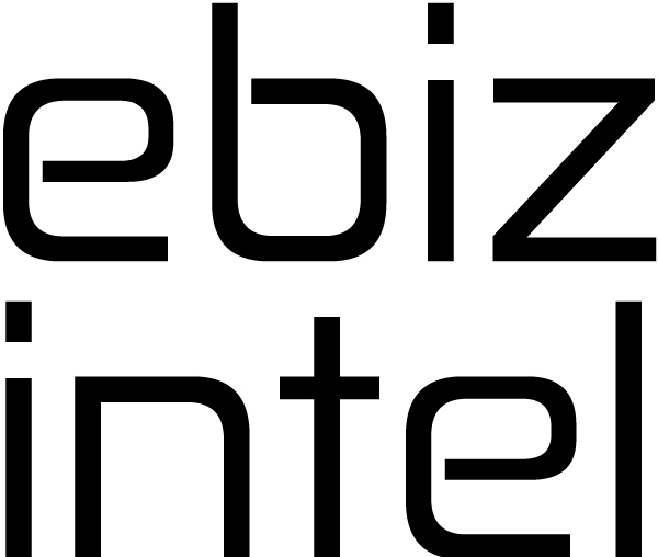 ebiz-intel logo homepage